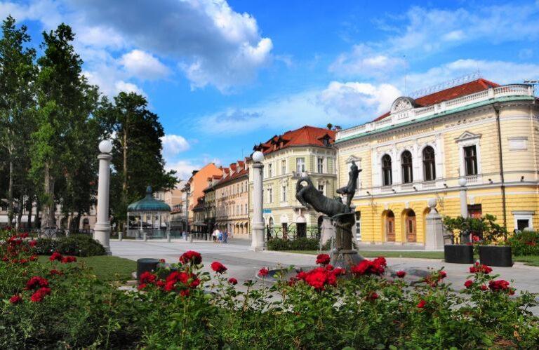 17. Slovenska filharmonija ( Dunja Wedam )
